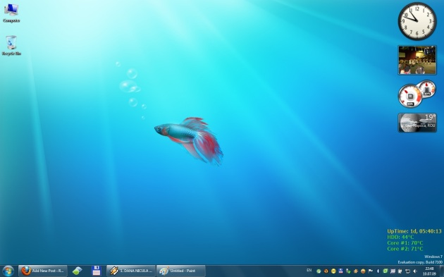 Windows7_desktop